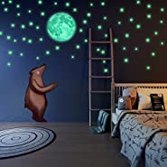 Glow in The Dark Stars and Moon Wall Stickers, Beautiful Wall Decals for Bedroom.Free Big Moon &220 adhesive Glowing Stars for Room,light your Ceiling, Bonus Affirmation Card for Kids By LIDERSTAR