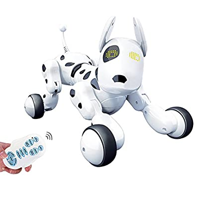 Haite Toys IR RC Smart Dog Sing Dance Walking Remote Control Robot Dog Electronic Pet Educational Kids Toy Funny Interactive Puppy