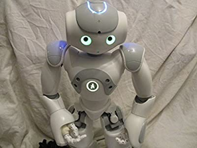 Nao Humanoid Robot V3.3 Evolution Sophisticated Learning Robot